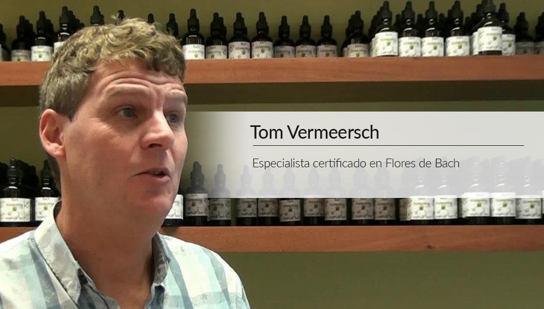 entrevista_tom_vermeesch2